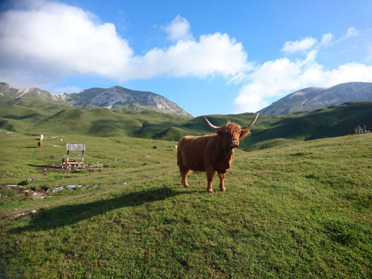 Dolomiten-Durchquerung (10)