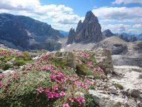 Dolomiten-Durchquerung (5)