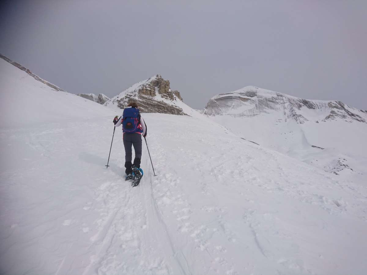 Schneeschuhtour Fanesalm (3)